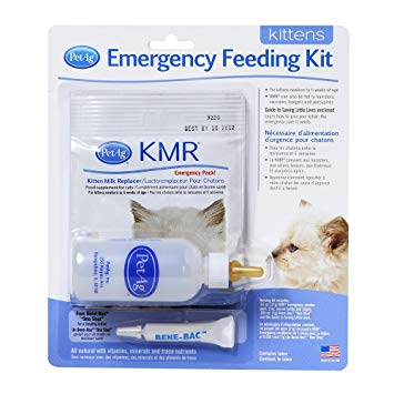 Kitten Milk Replacement - Emergency Feeding Kit