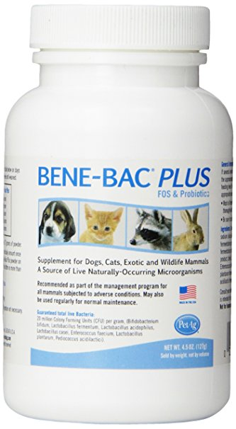 Ben-Bac Plus for dogs and cats