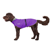 Chillydogs Harbour slicker Purple