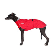 Chillydogs slicker red