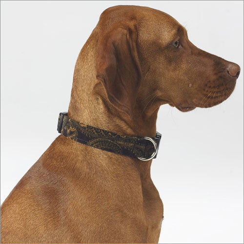 Bowser Dog Collar In Windsor Microvelvet Size 26-30''