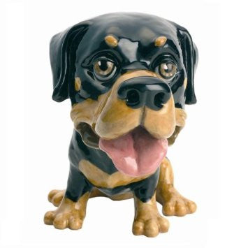 Bridgman Little Paws - Rocky - The Rottweiler