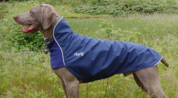 Chilly Dogs - Rain Slicker - Small - 18""