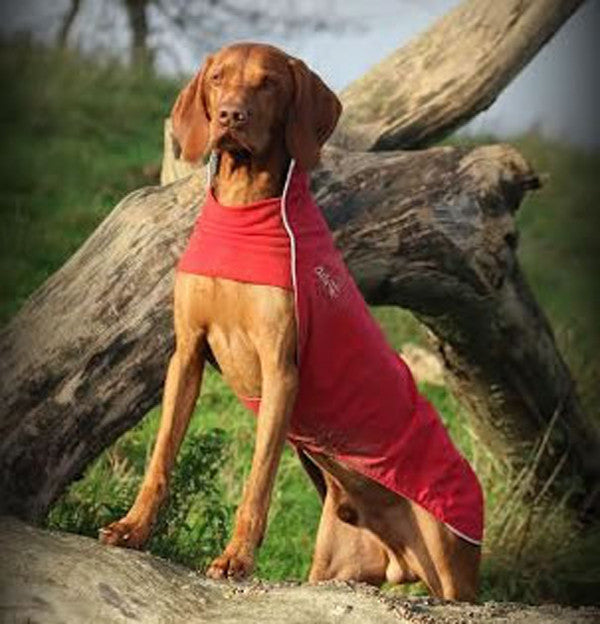 Chilly Dogs - Rain Slicker - Red