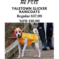 Rc pets raincoat for dogs
