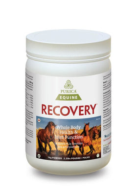 Purica Equine Recovery Regular Strength