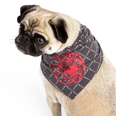Game of Thrones bandana for dogs