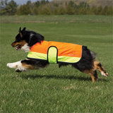 Shedrow K9 - Beacon Dog Coat - Neon Orange