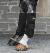 Back On Track - Equine - Hind Exercise Boots