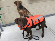 Kyjen Outward Hound Lifejacket - XXS - XL - NOW 50% Off!!