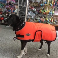 Shedrow - Tundra Dog Coat - Orange