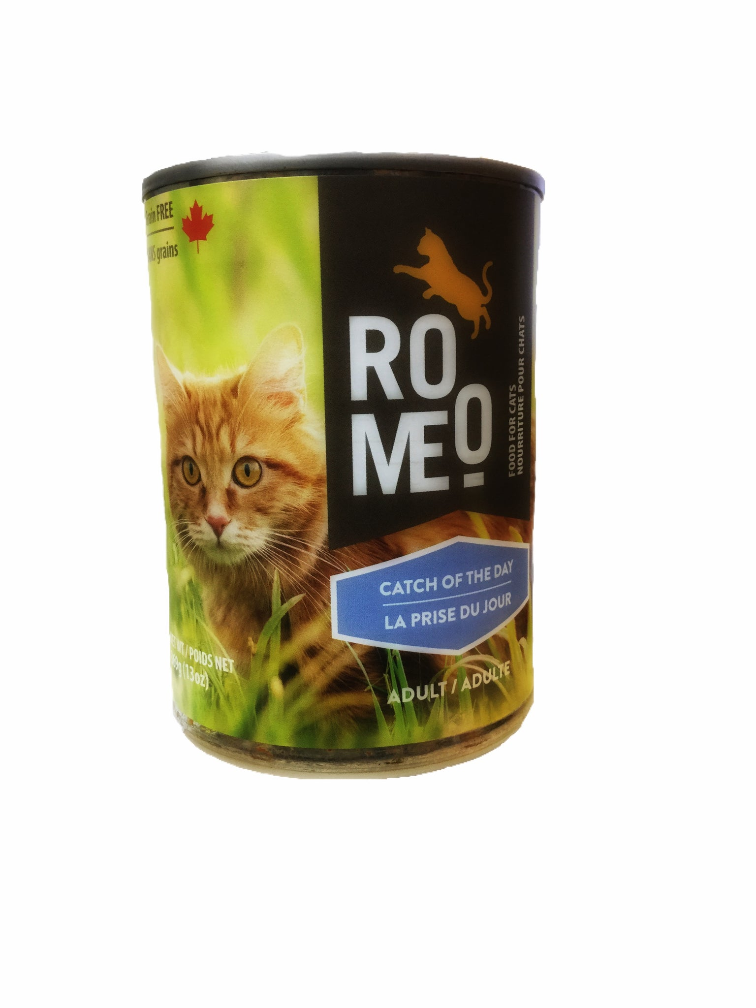 group pet surefeed approach feeders cat shop feeder focus microchip feline automatic ginger bowls modified