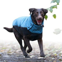 Canine equipment coat