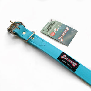 Smoochy Poochy - Polyvinyl Waterproof Collar - Turquoise NEW COLOR