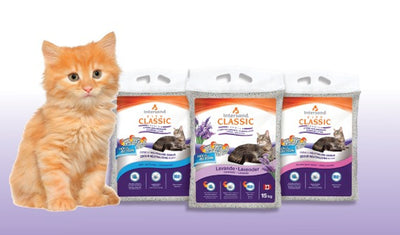 Intersand - Classic Clumping Litter 15kg