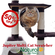 Jupiter cat tree sale