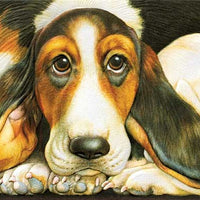 Pumpernickel Press - Basset Hound
