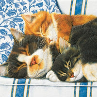 Pumpernickel Press - Sleepy Kitties