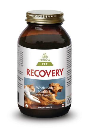 Purica Recovery SA Plant Based Glucosomine Powder for dogs or cats