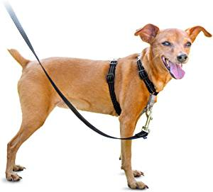 Pet Safe 3 in 1 Harness