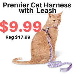 Premier Cat Harness with Leash SALE