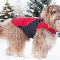RC Trilogy Coat Dog Coat