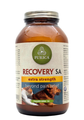 Recovery SA Extra Strength