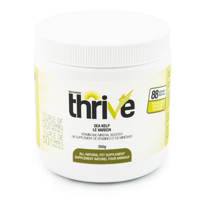 Big Country Raw - Thrive - Sea Kelp SALE Short dated