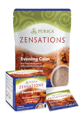 Evening Calm Red Reishi Mushroom and Ashwagandha Cacao Mix 12 packets