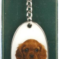 Bridgman - Best of Breed Keychains - King Charles Spaniel