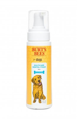 Burt's Bees Multicare Dental Foam for Dogs - Mint Flavor