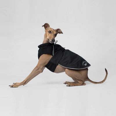 Canada Pooch - Expedition Coat - Black NEW