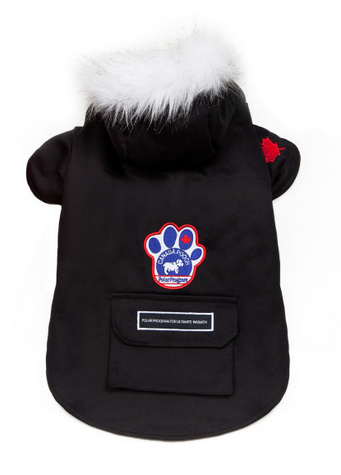 Canada Pooch Winter Wilderness Jacket - Black