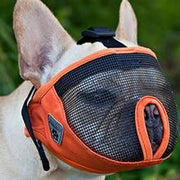 Canine Friendly - Short Snout Muzzle