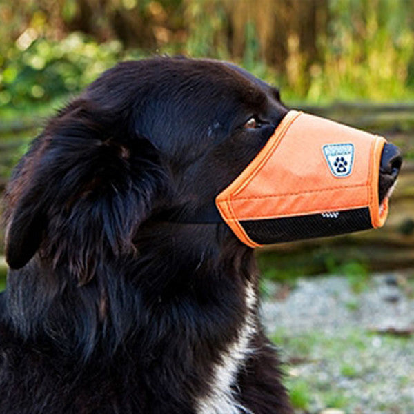 Canine Friendly - Soft Fit Dog Muzzle