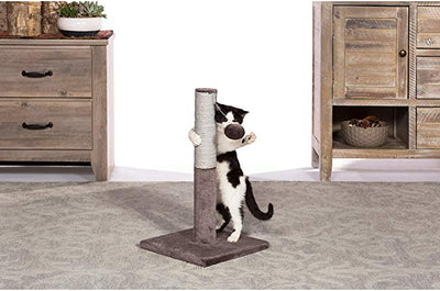 Kitty Power Paws Play & scratch  Toy Post