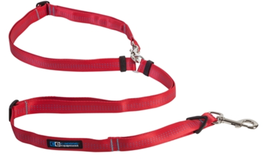 Canine Equipment Beyond Control Leash - Red