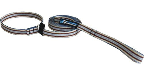 Canine Equipment Leash - Brown Stripes