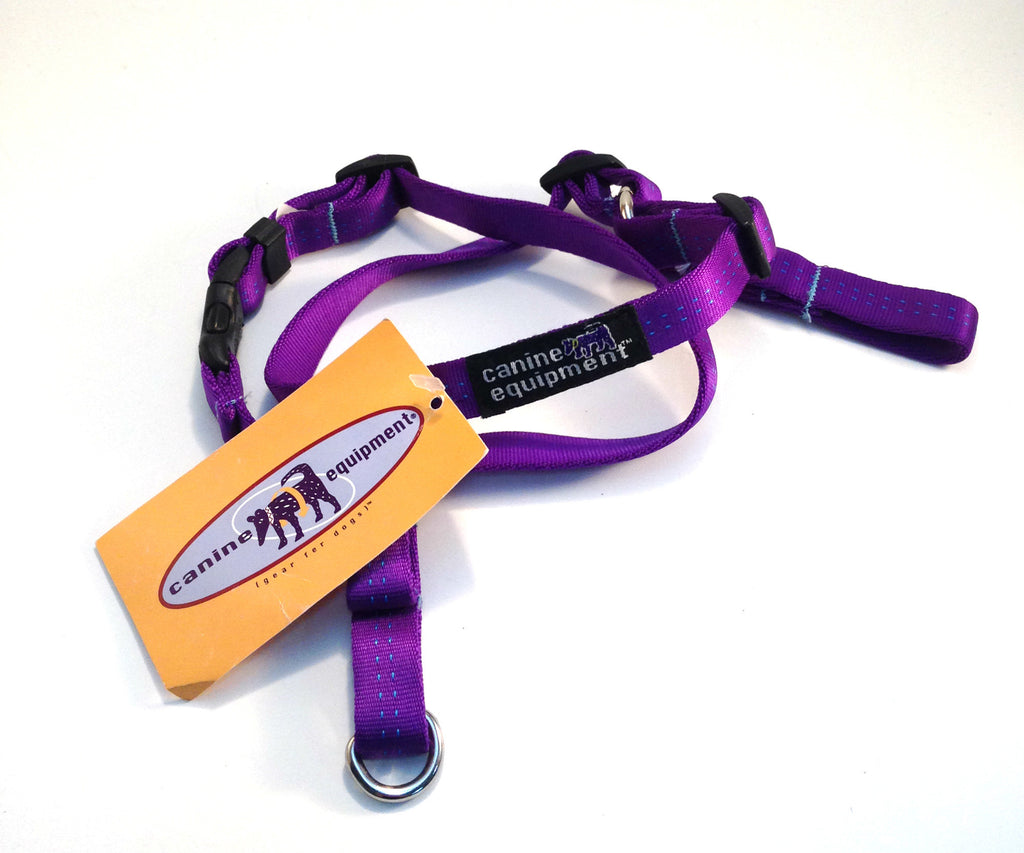 Canine Equipment Harness - Purple and Blue Small