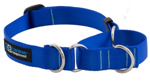 Canine Equipment Collar Blue