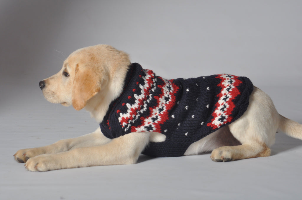 Chilly Dog Fairisle Alpine Navy Sweater SALE