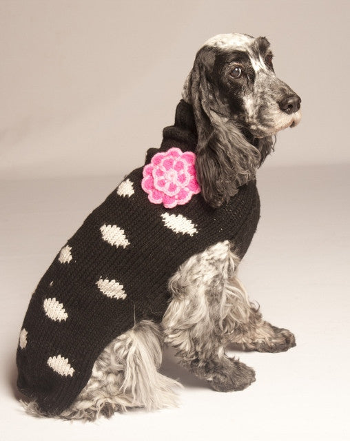 Chilly Dog Girly Polkadot Black Sweater SALE