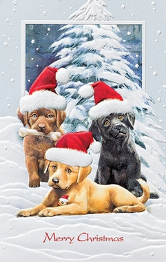 Christmas Cards - Dog SALE