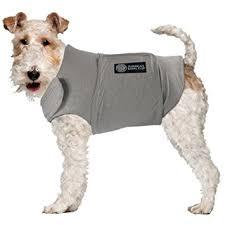 Calming coat for dogs