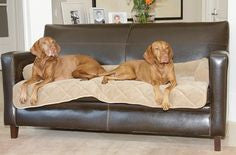 Bowsers Pet Products - Couch Guardian - Large