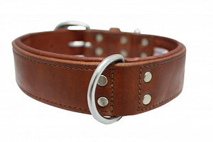 Angel Elite Leather Collar - Dallas