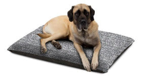 Carpenter Pet Bed Knife-Edge Pillow Quinn Assorted Colors