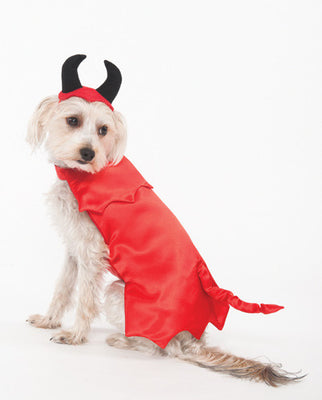 Ethical Devil Costume
