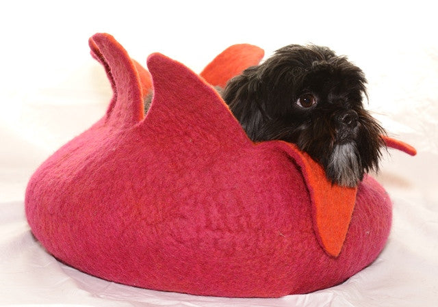 dharma dog karma cat petal cave in pink and orange