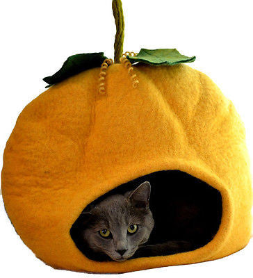 Dharma dog karma cat pumpkin bed Orange